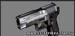 SIG P228 with Chrome Slide